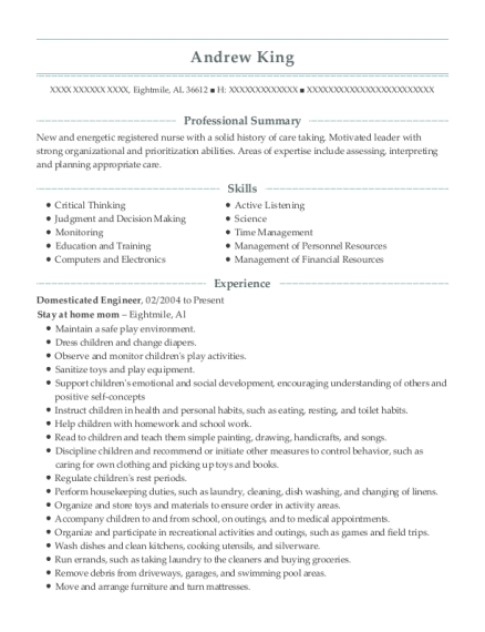 Domesticated Engineer resume format Alabama