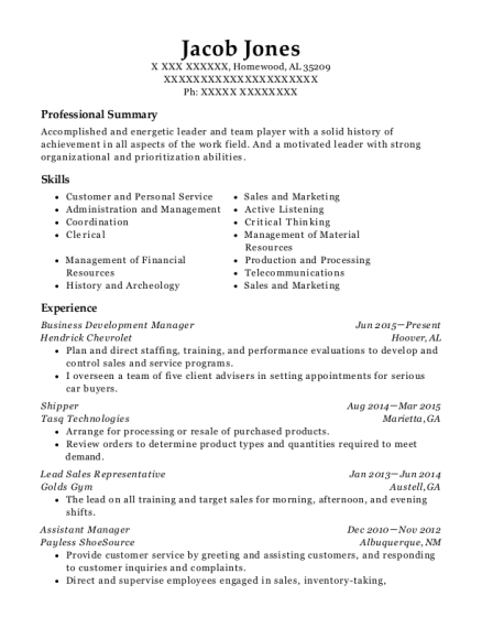 Business Development Manager resume format Alabama
