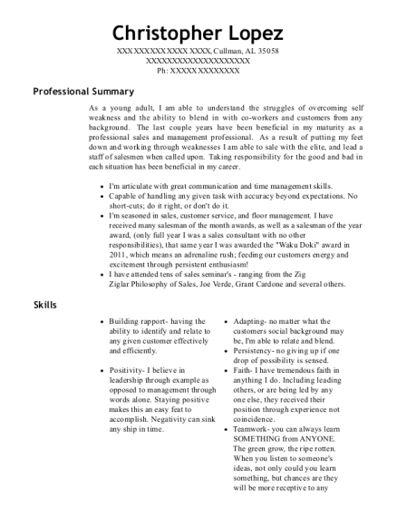 Sales Consultant Sales Closer Backup Finance & Insurance resume example Alabama