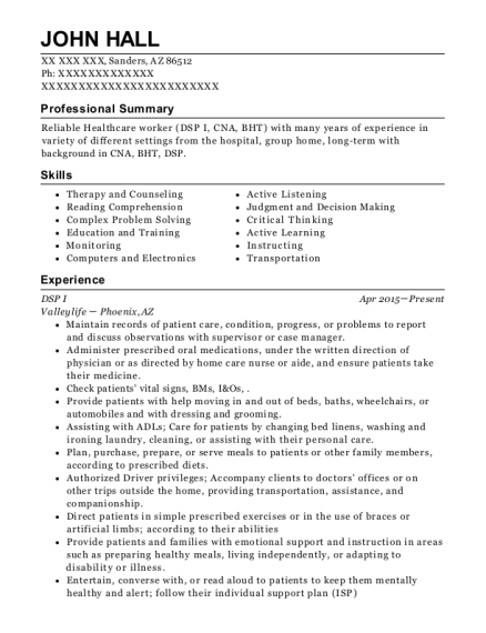 DSP I resume example Arizona