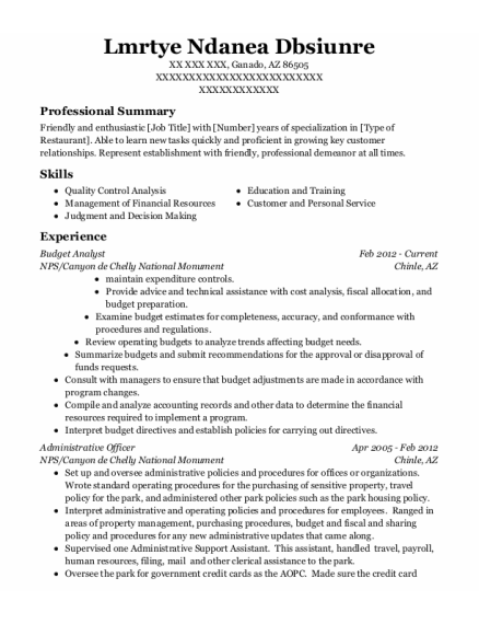 Budget Analyst resume sample Arizona