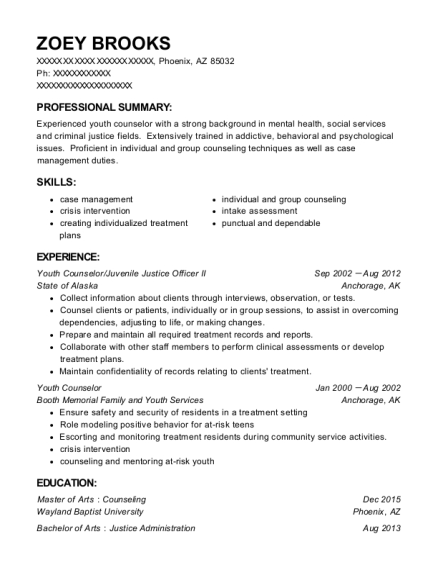 Youth Counselor resume format Arizona