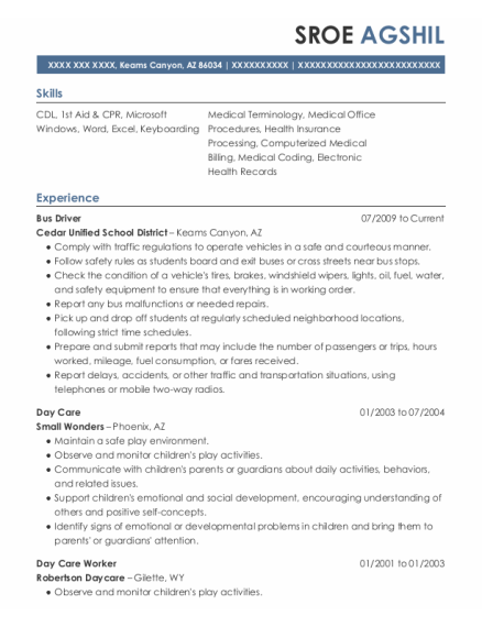 Bus Driver resume example Arizona
