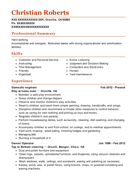 Domestic engineer resume example California