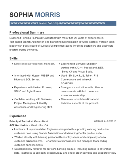 Principal Technical Consultant resume template California