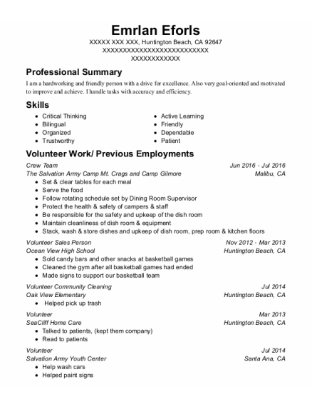 Volunteer Sales Person resume format California