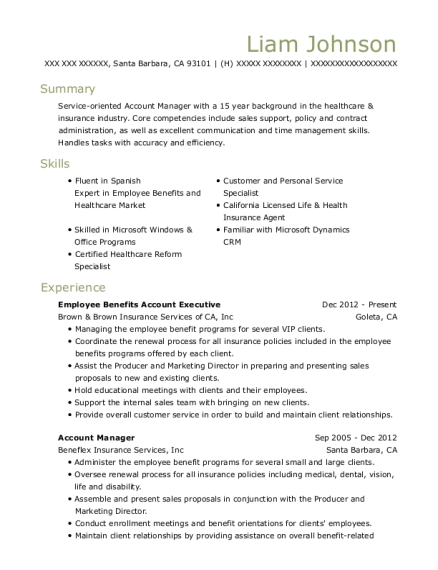 Employee Benefits Account Executive resume template California
