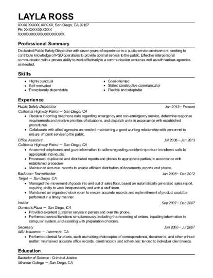 lsg sky chefs dispatcher resume sample