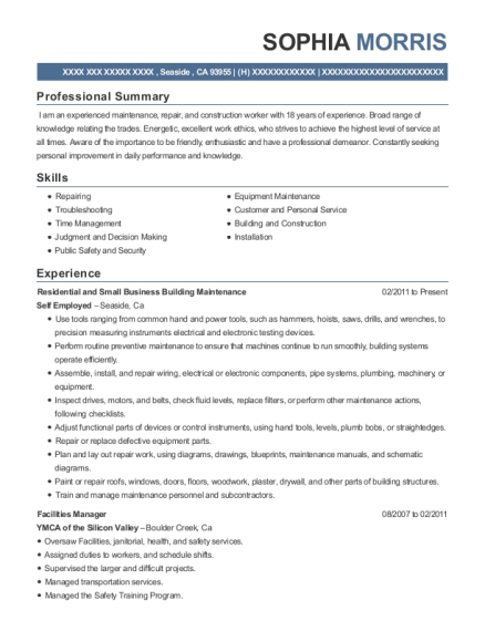 Residential and Small Business Building Maintenance resume example California