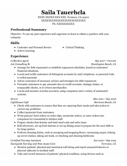Collection Agent resume example California