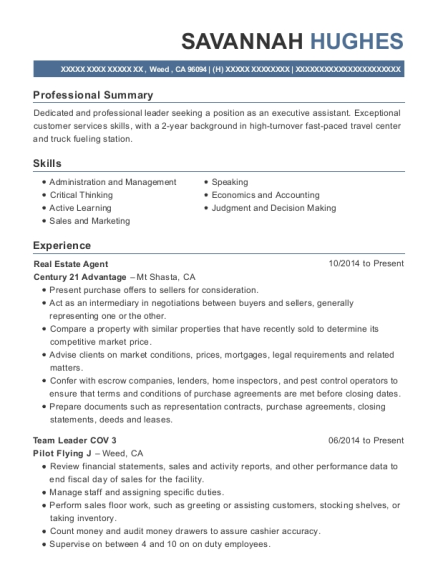 Real Estate Agent resume template California