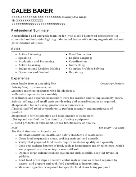 team leader from a assembly line resume template California