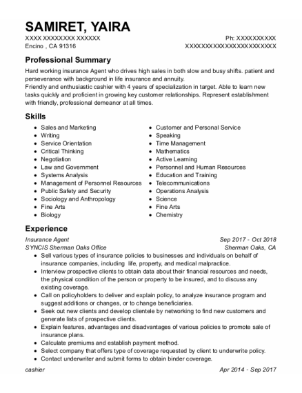 Insurance Agent resume sample California