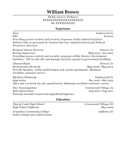 PSO resume template Colorado