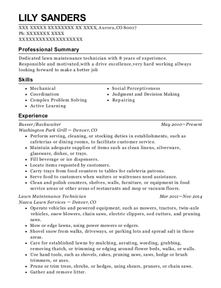 Busser resume format Colorado