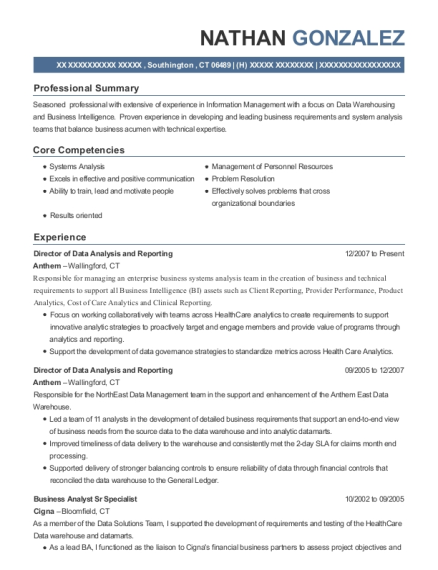 Director of Data Analysis and Reporting resume template Connecticut