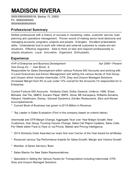 AVP of Enterprise and Business Development resume example Florida