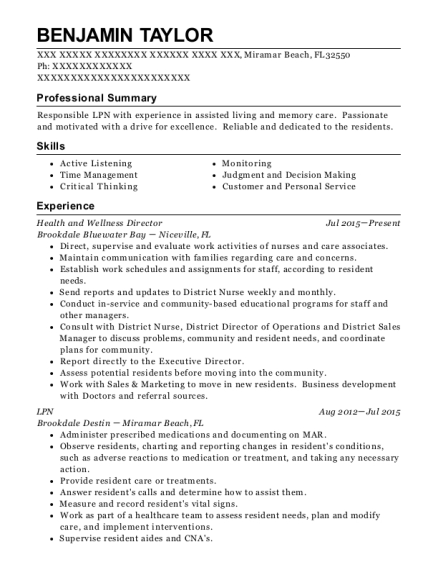 Health and Wellness Director resume template Florida