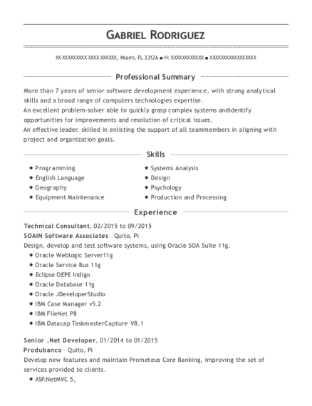 Technical Consultant resume format Florida