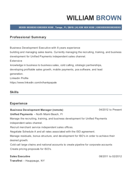 Business Development Manager resume template Florida