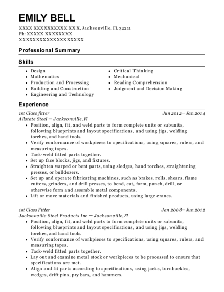 1st Class fitter resume sample Florida