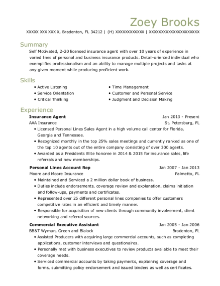 Insurance Agent resume example Florida