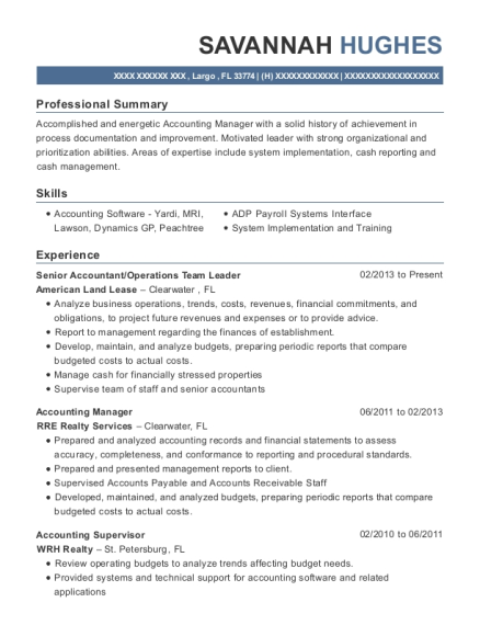 Senior Accountant resume example Florida