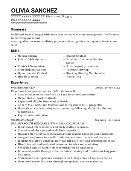 President and CEO resume sample Florida
