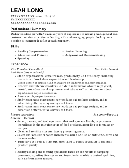 Vice President Consultant resume template Florida