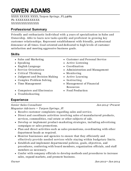 Senior Sales Consultant resume template Florida