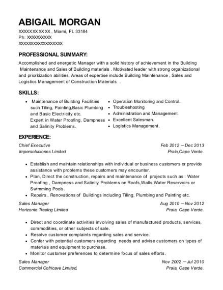 Chief Executive resume template Florida