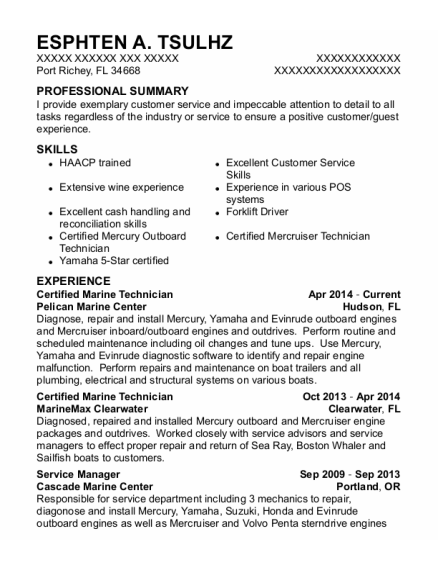 Service Manager resume template Florida