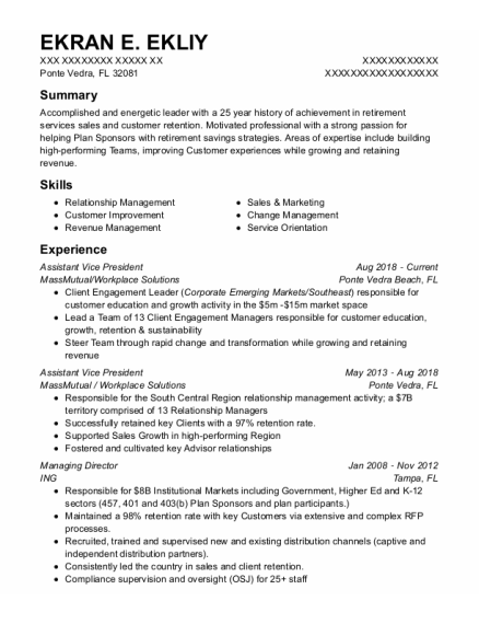 Assistant Vice President resume example Florida