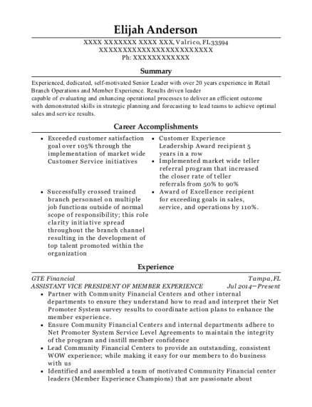 ASSISTANT VICE PRESIDENT OF MEMBER EXPERIENCE resume template Florida
