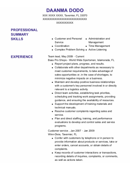 Team Lead resume template Florida