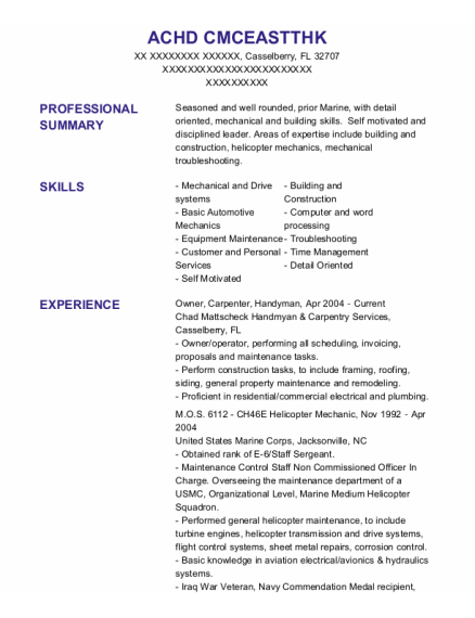 Owner resume example Florida