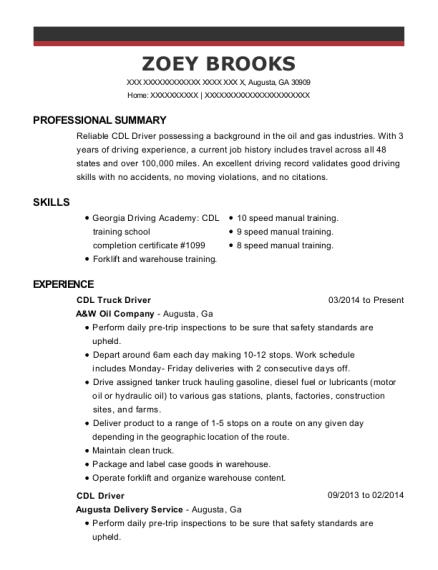 CDL Truck Driver resume example Georgia