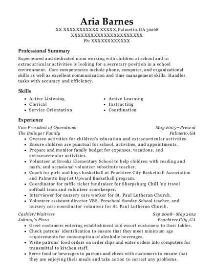Vice President of Operations resume format Georgia