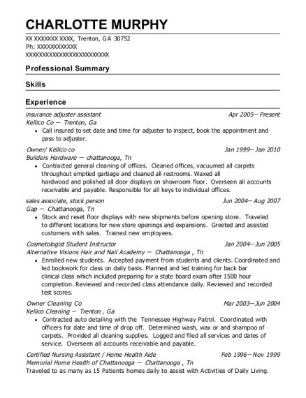 insurance adjuster assistant resume example Georgia