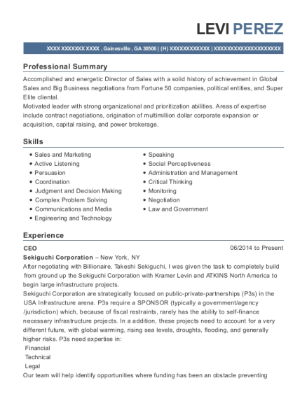 CEO resume sample Georgia