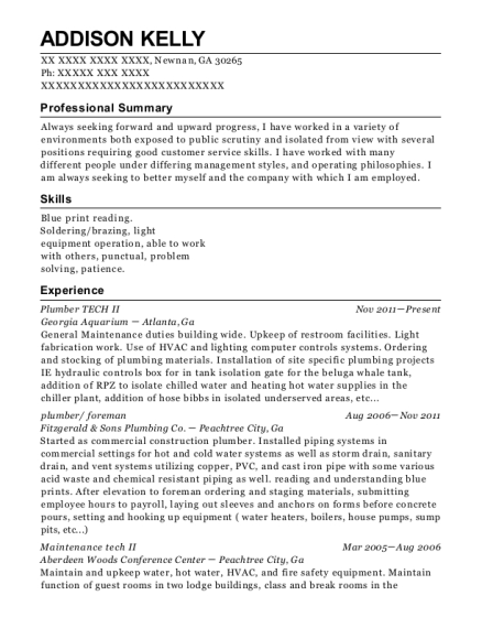 Plumber TECH II resume example Georgia