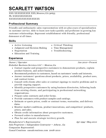 Owner resume format Georgia