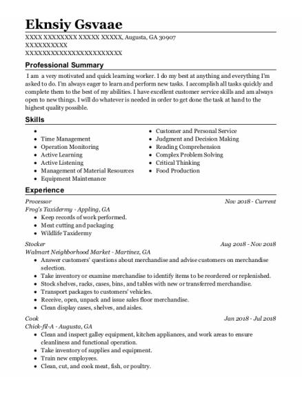Processor resume example Georgia