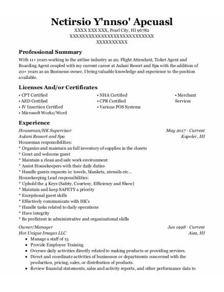 CEO resume example Hawaii