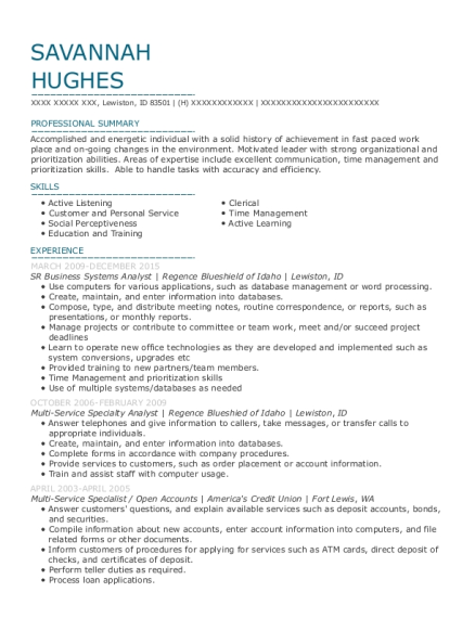 SR Business Systems Analyst resume format Idaho
