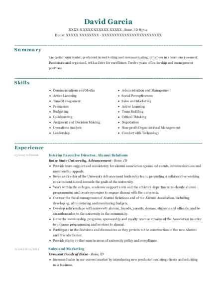 Interim Executive Director resume format Idaho