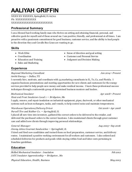 ambit energy regional marketing consultant resume sample
