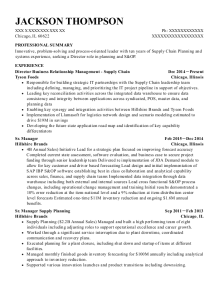 Director Business Relationship Management Supply Chain resume example Illinois