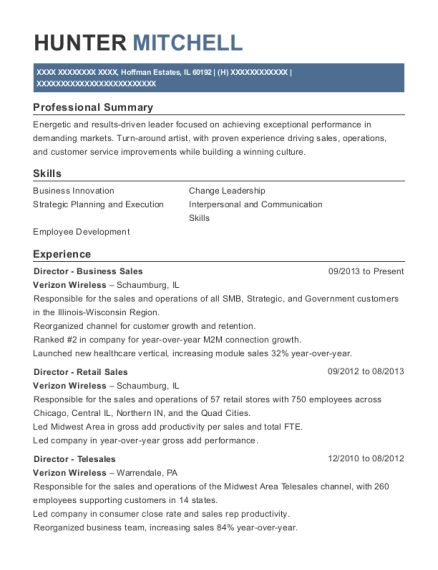 Director Business Sales resume sample Illinois