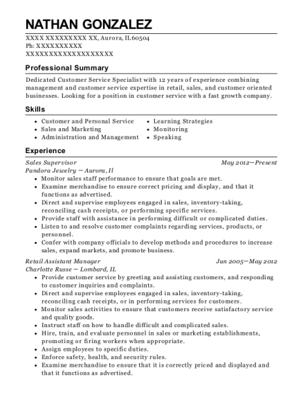 Sales Supervisor resume format Illinois